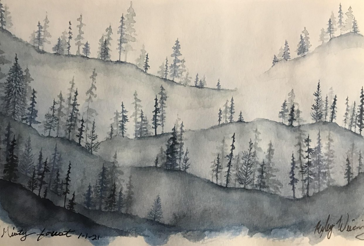 Misty Forest Study - student project