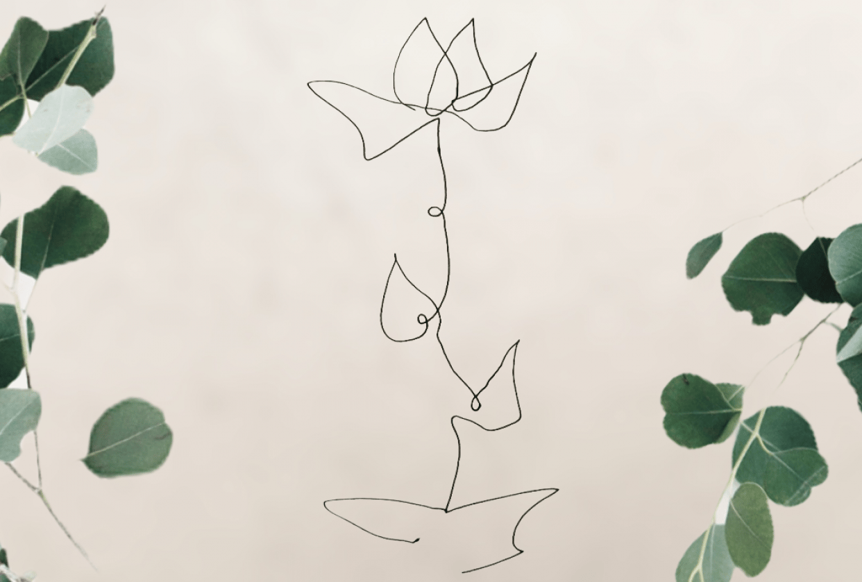 Flower Line Drawings - student project