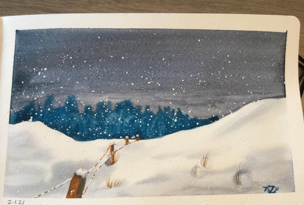 Snow Fence & Field - student project