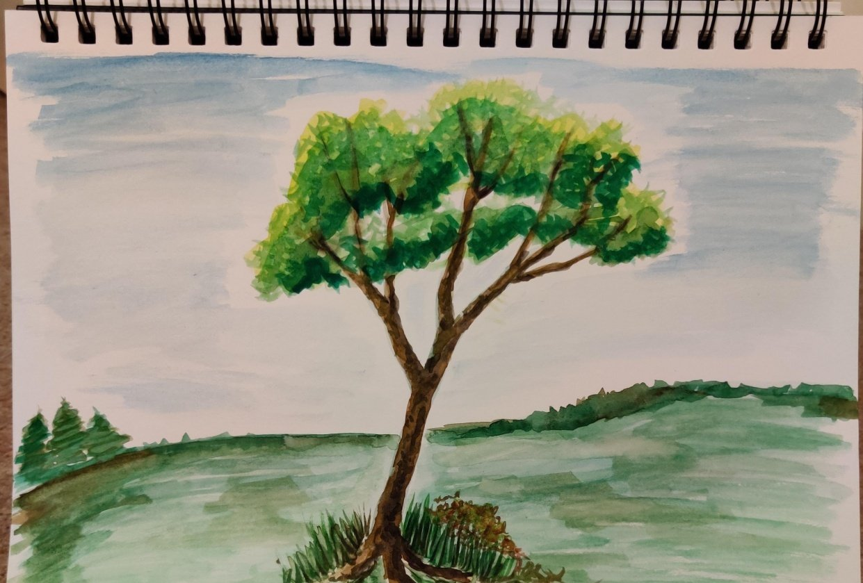 Painting trees with ABCs - student project