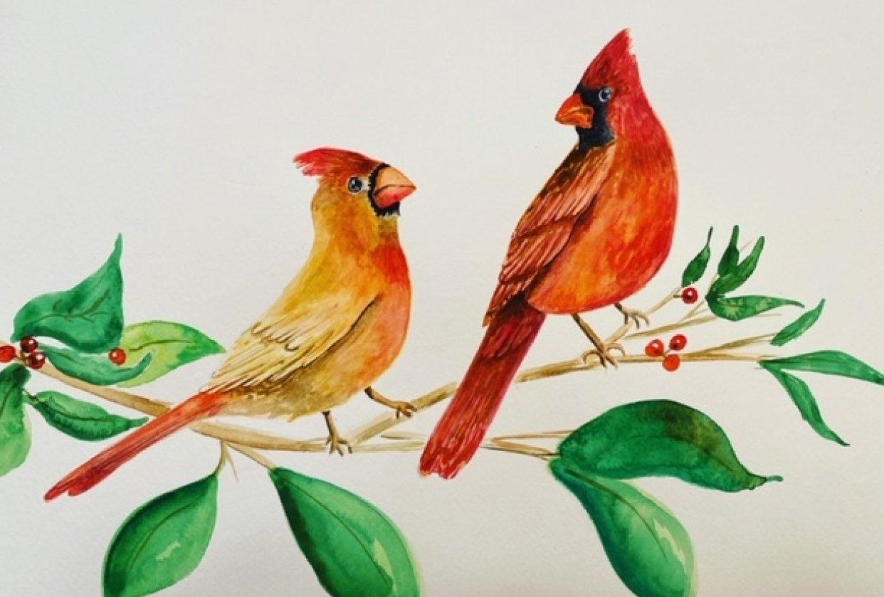 Cardinals - student project