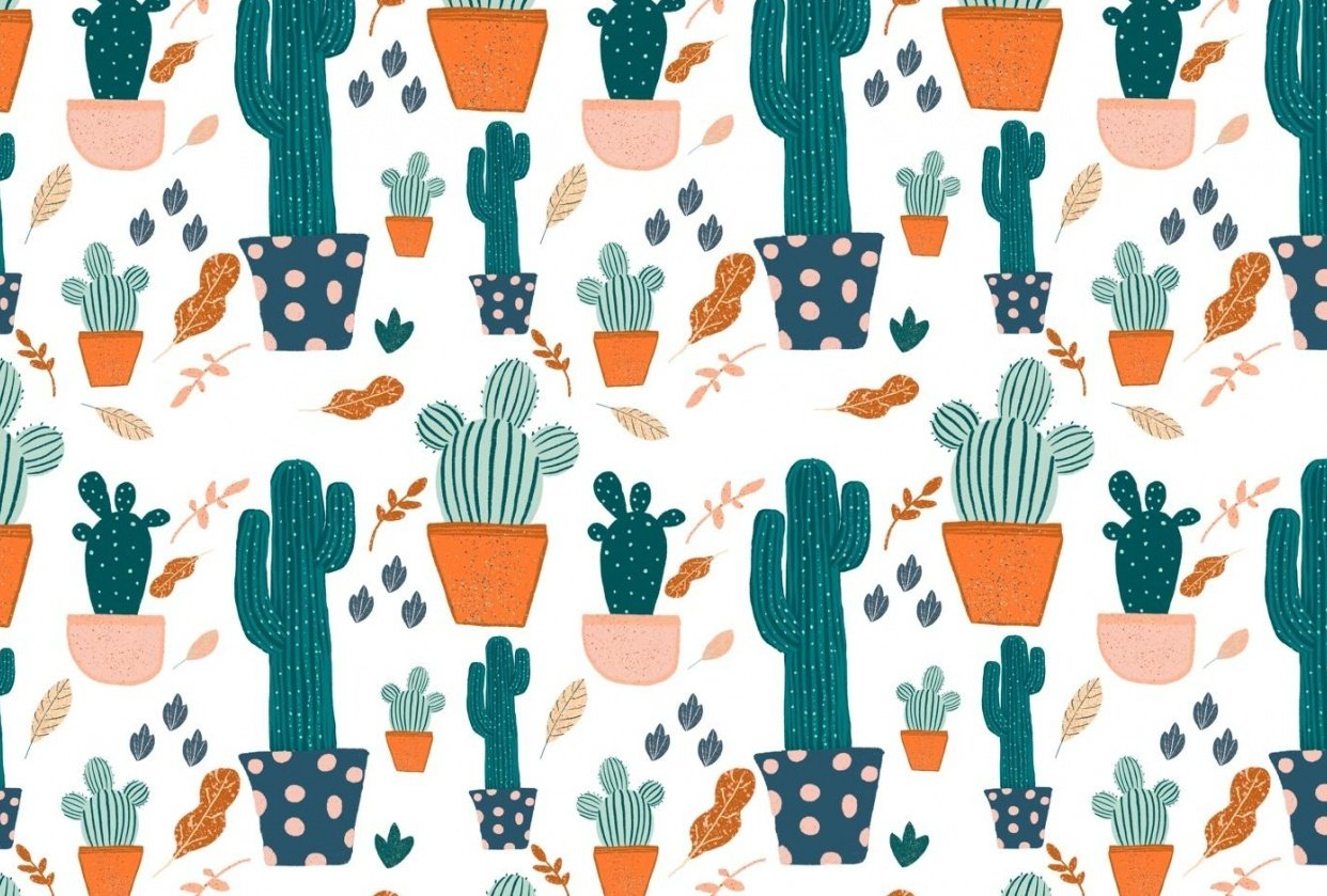 cactus family by berriesandpassion - student project