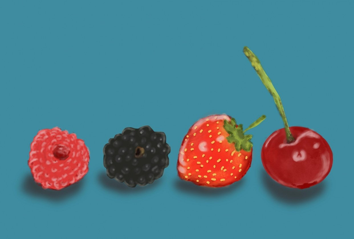 Berries - student project