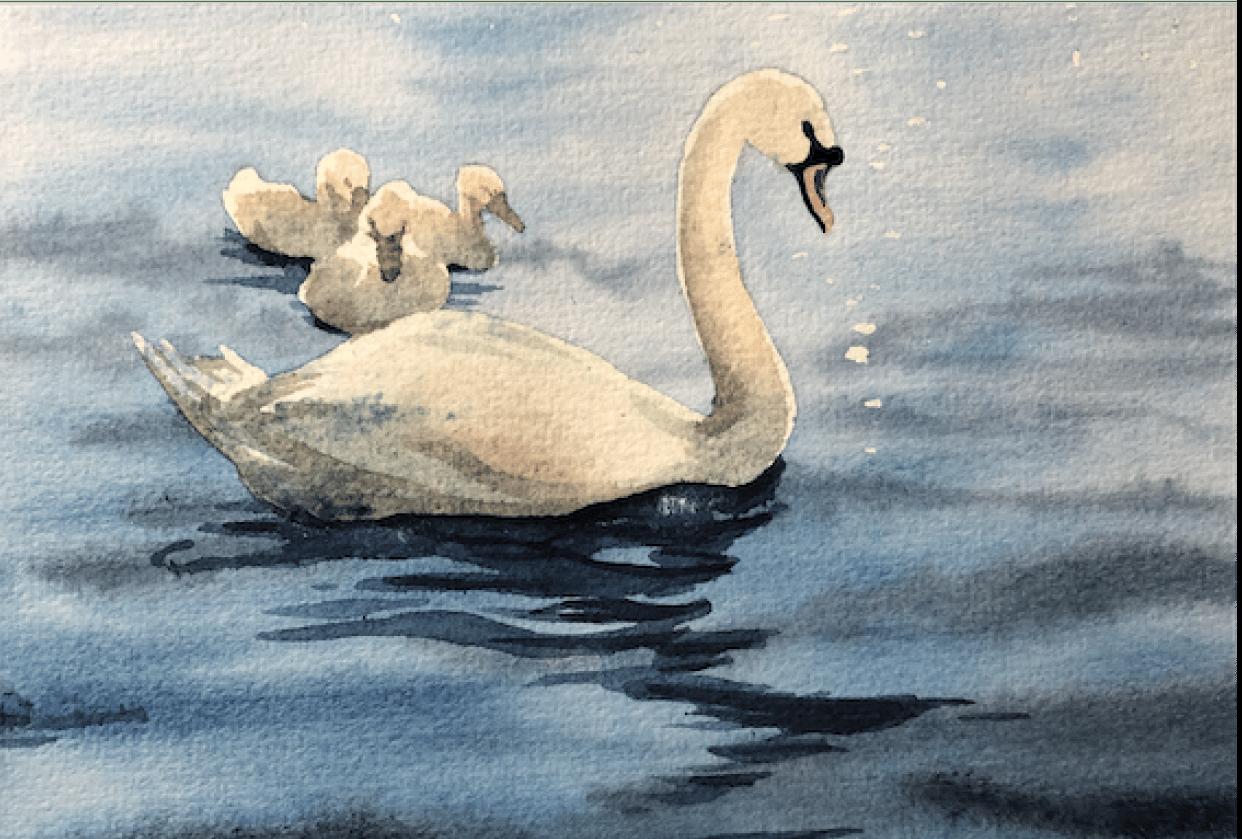 Swan Lake Adventure - student project