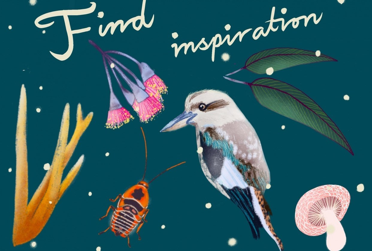 Find inspiration - student project