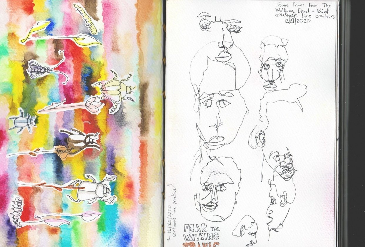 My attempt at this course and blind contour single line drawings. - student project