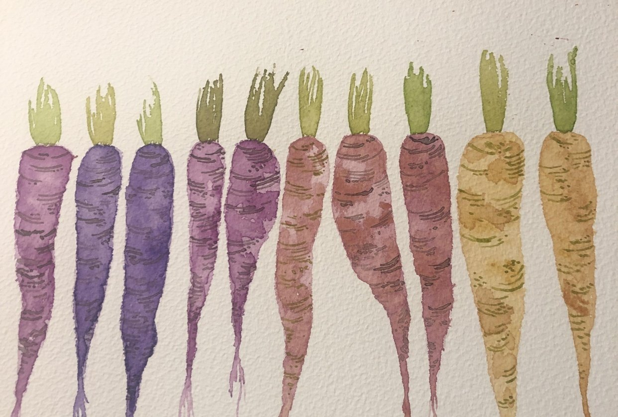 Carrots - student project