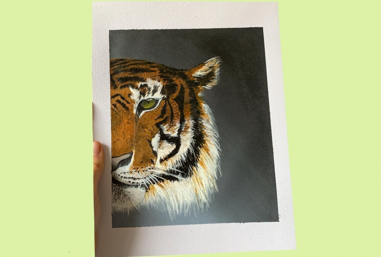 Tiger Face - student project