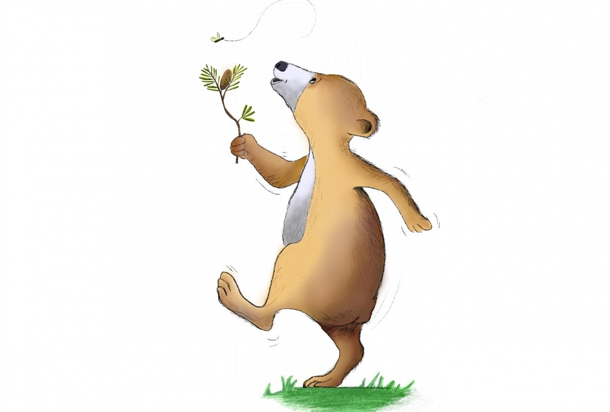 Bear Illustration - student project