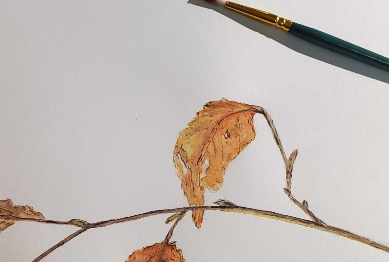 Watercolor in the woods  - winter leaf - student project