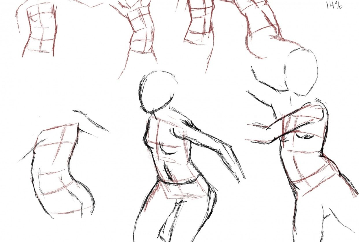 Dynamic pose timed practice - student project