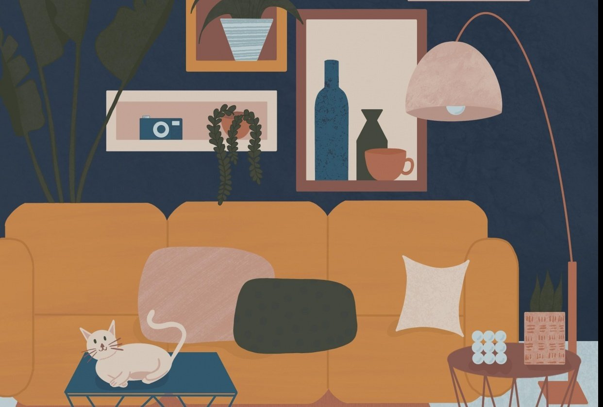Cat's cradle - student project