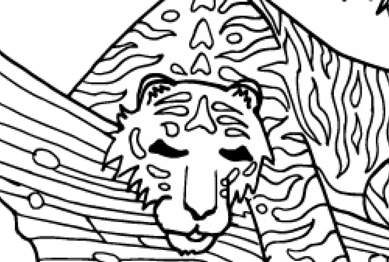 Tiger colouring page - student project