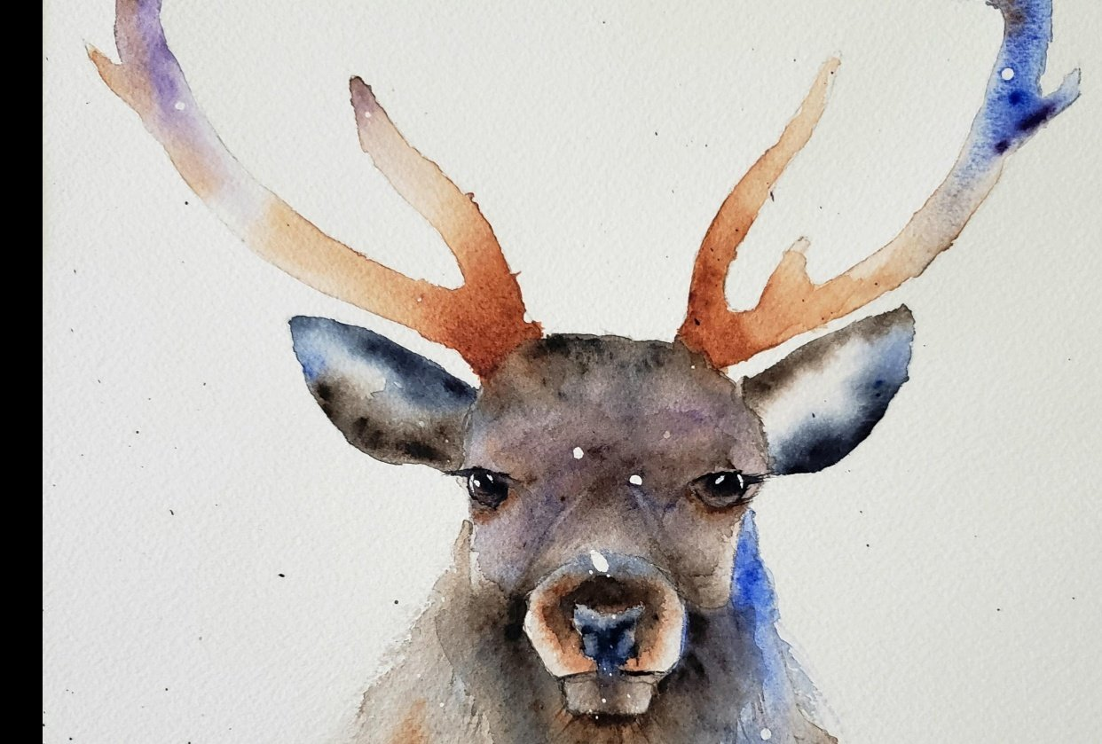 A festive Stag - student project