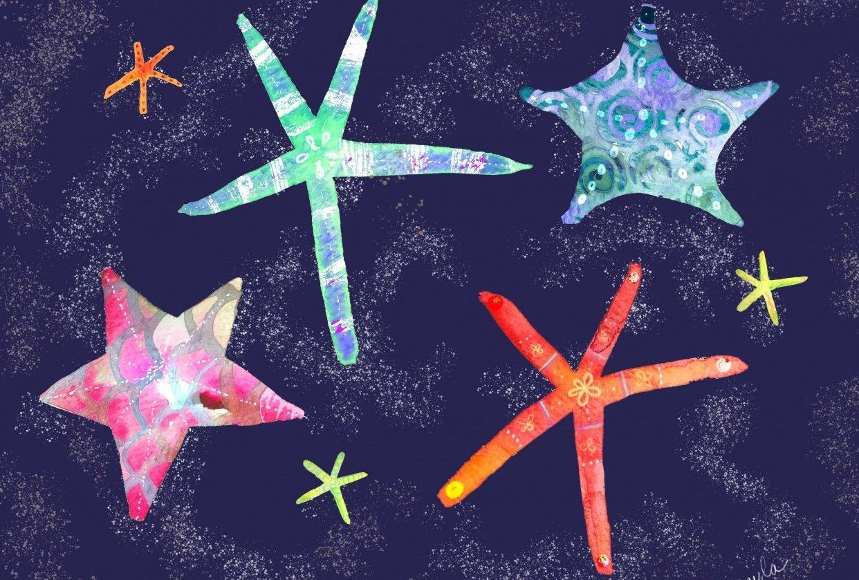 Starfish, by Gayla Irwin - student project