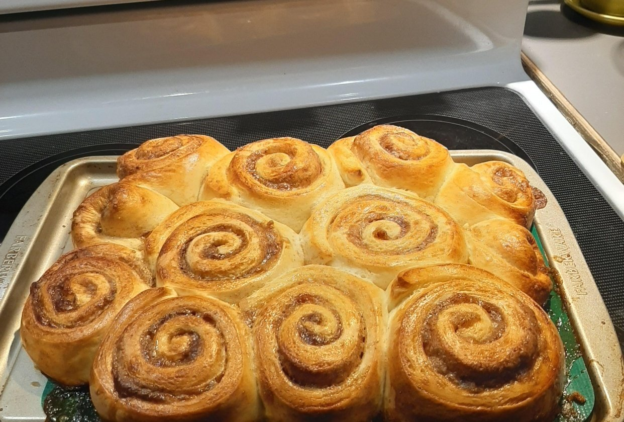 My very first cinnamon buns ever - student project
