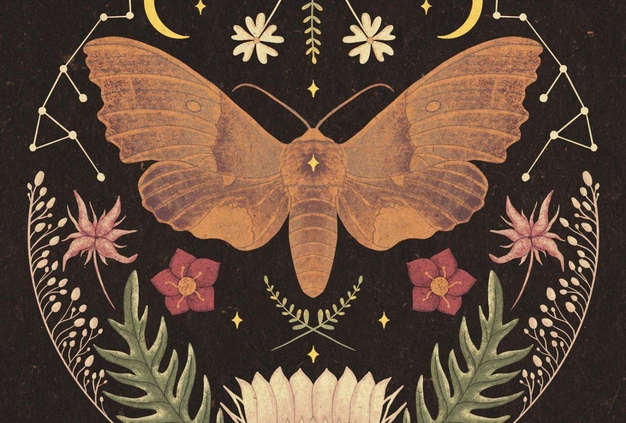 Moth folk illustration - student project