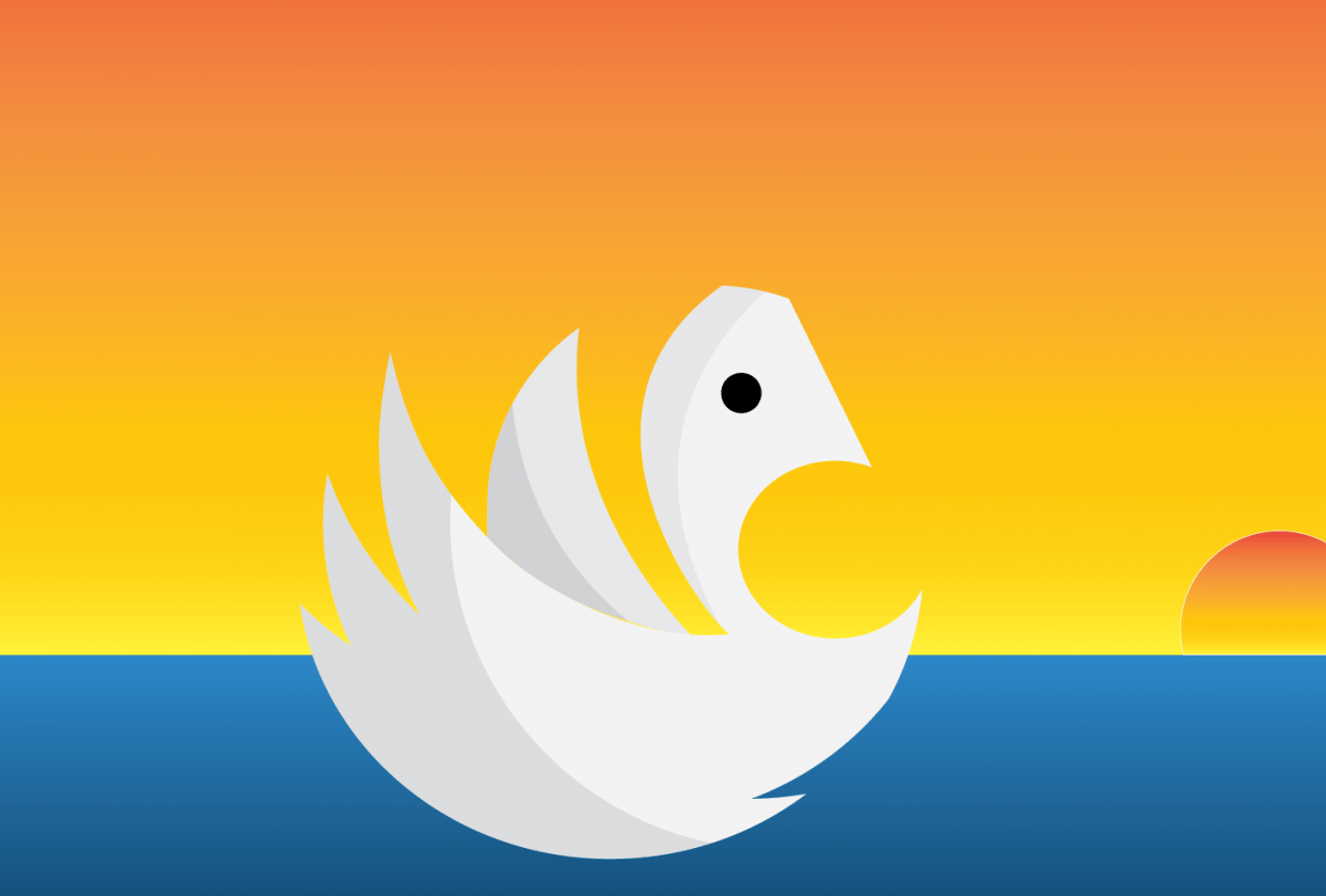 Swan - student project