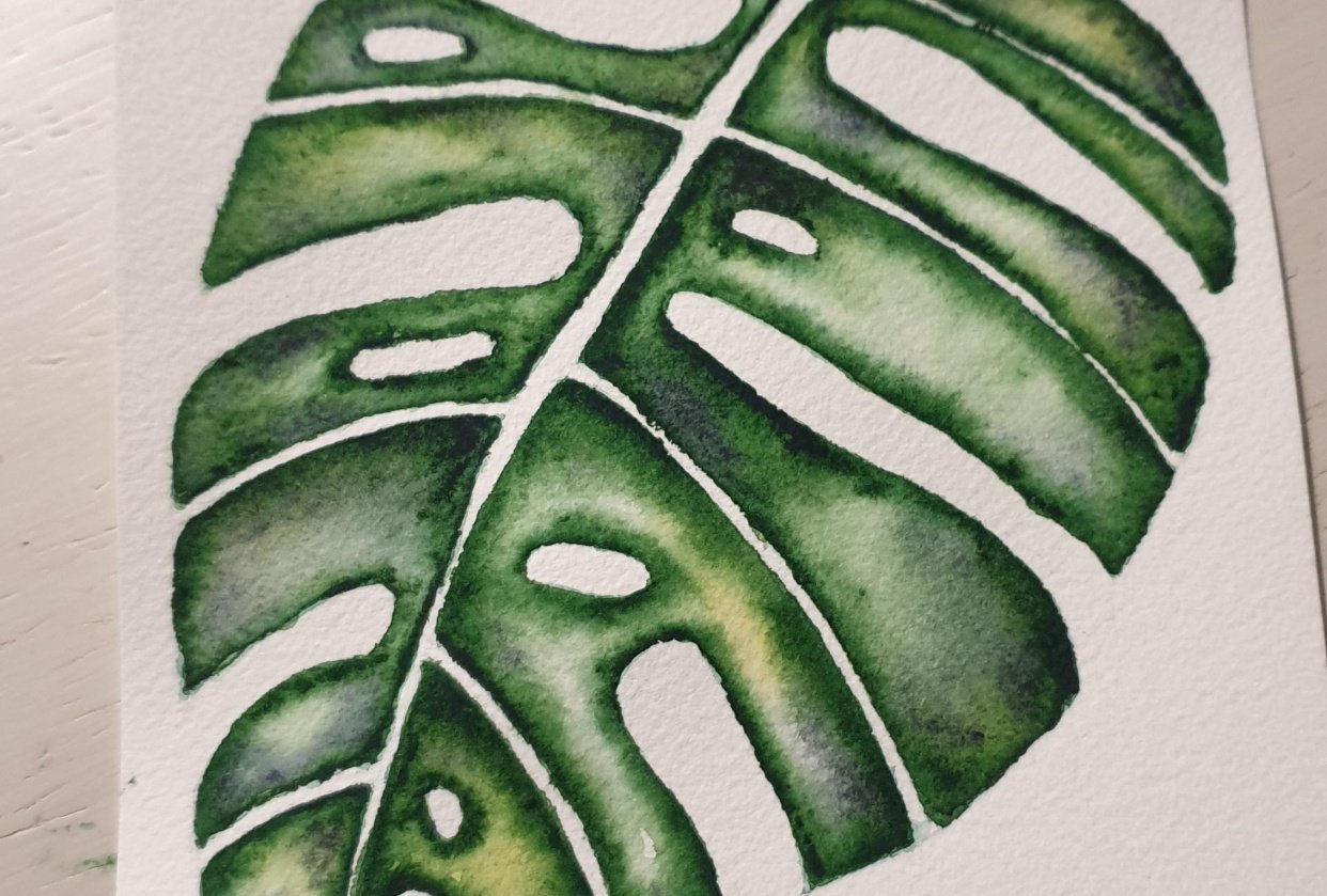 Monstera - student project