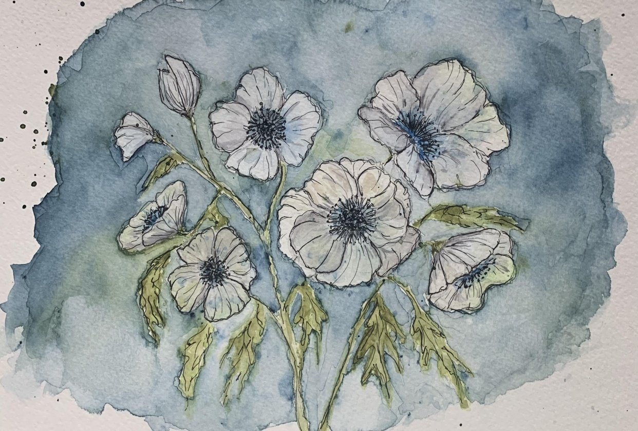 White Anemones - student project