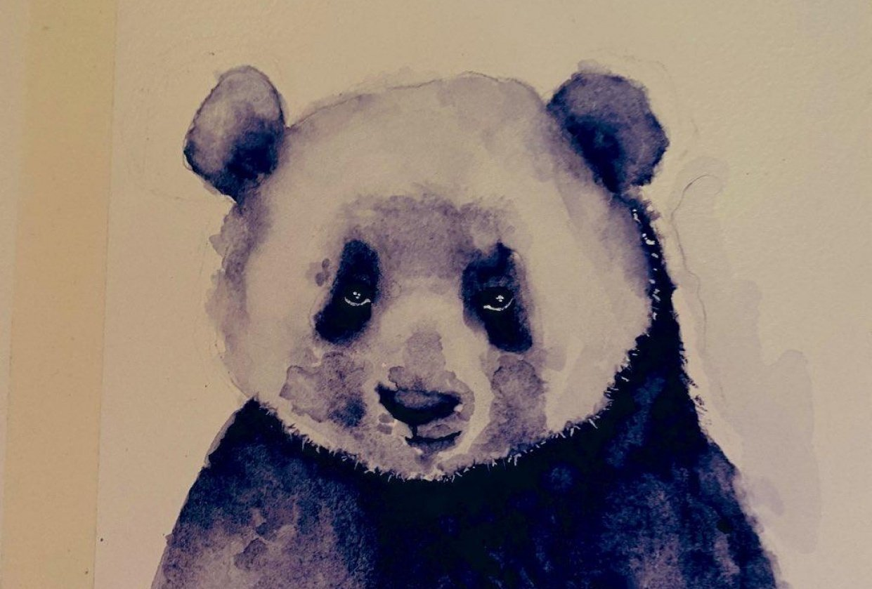 Mr Panda Says 2021 You're Testing My Patience. - student project