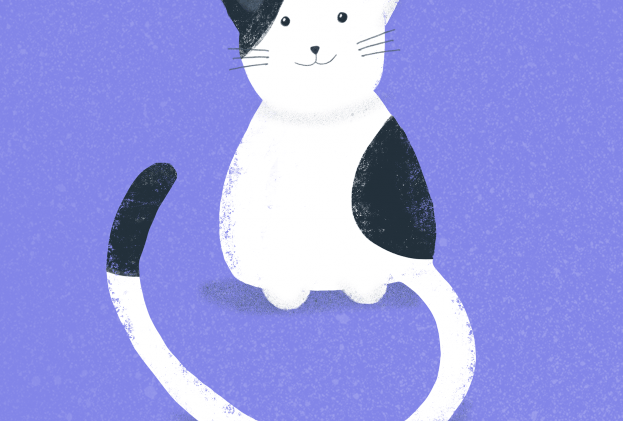 Textured kitty - student project