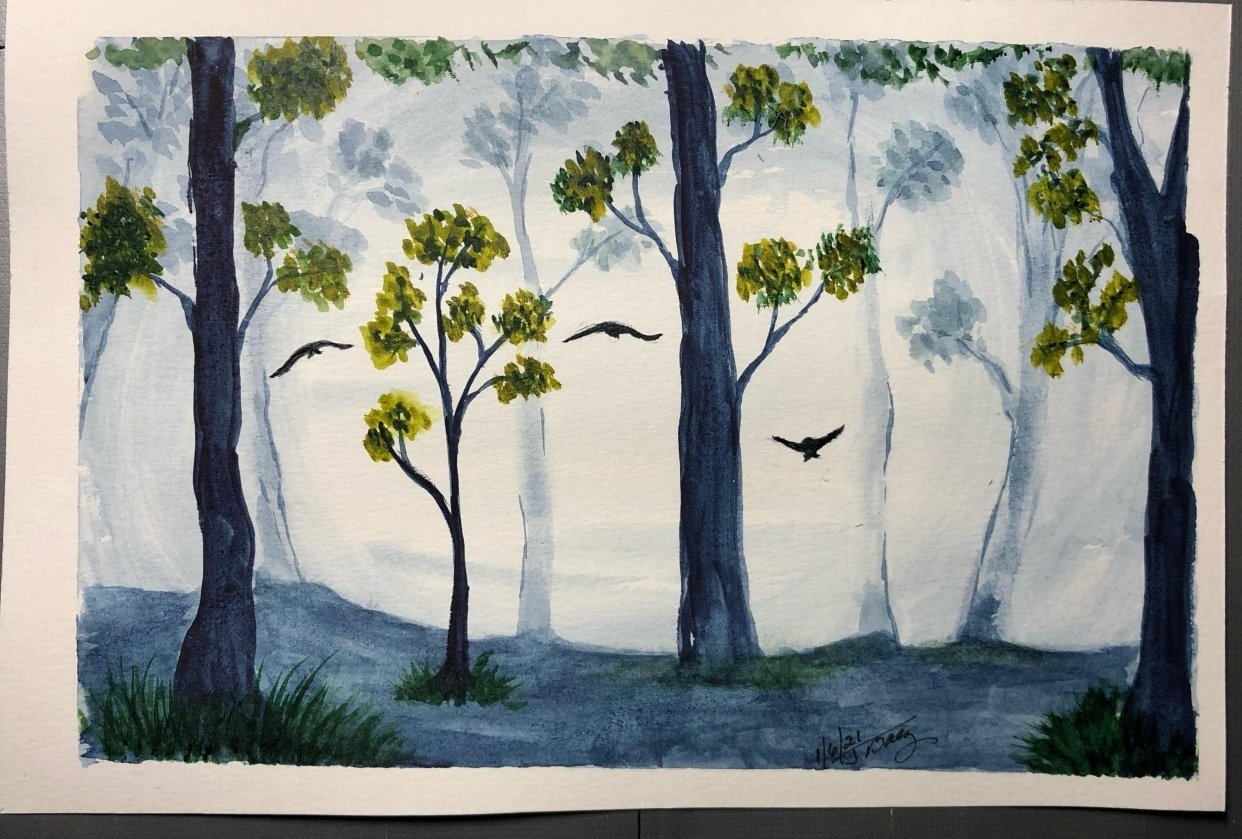 Misty Forrest - student project