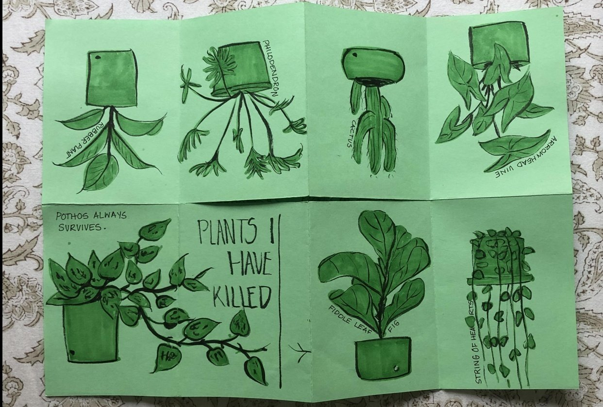 Plants I have killed - student project