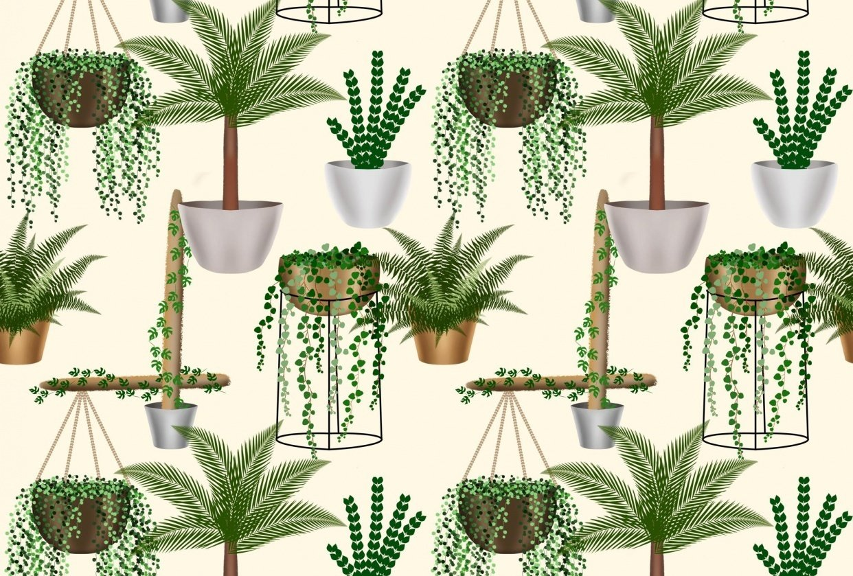 House Plants Seamless Pattern - student project