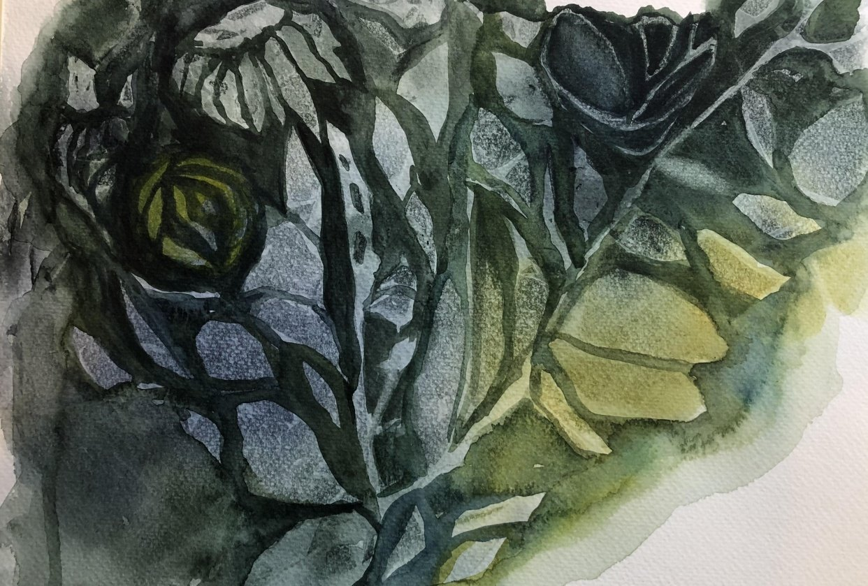 No flowers, only leaves - student project