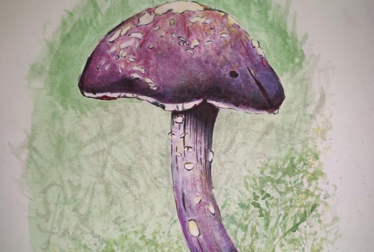 Mushroom + Fern - student project