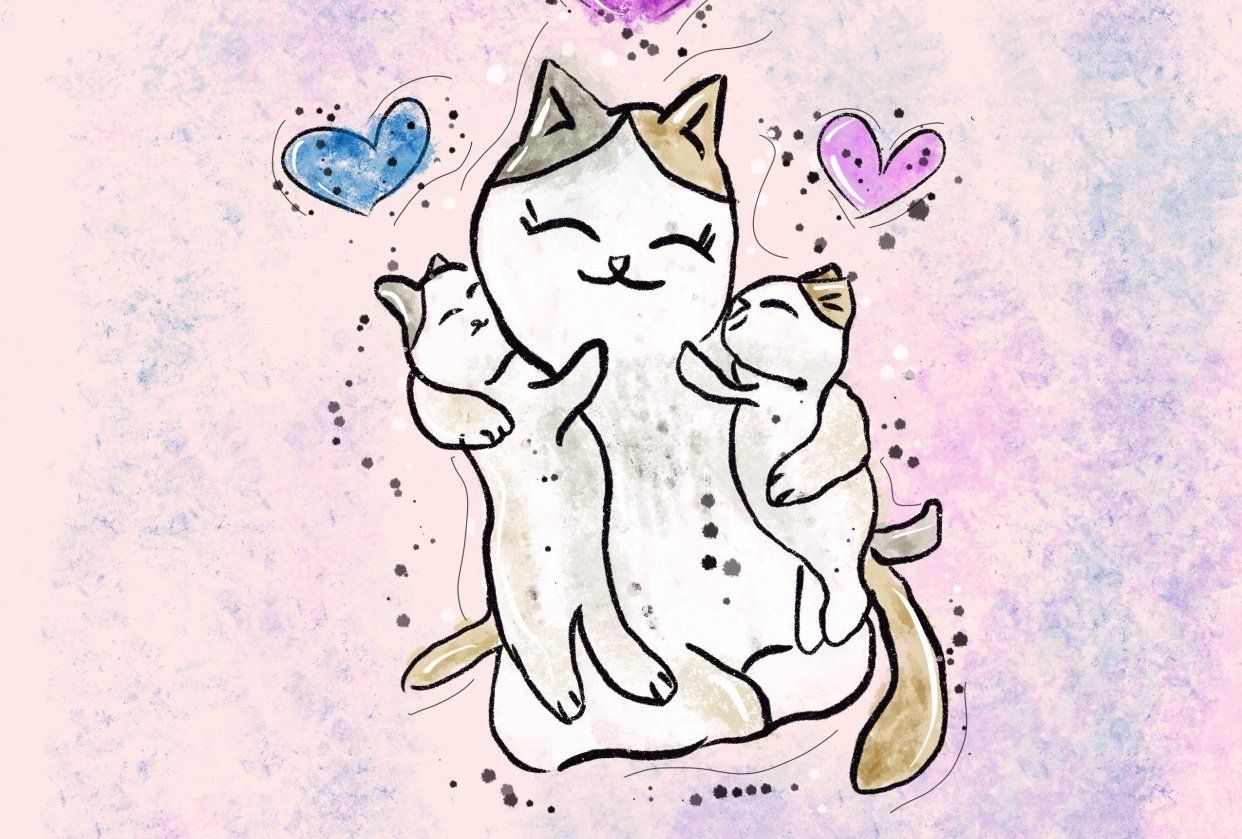 Cute kitty love - student project