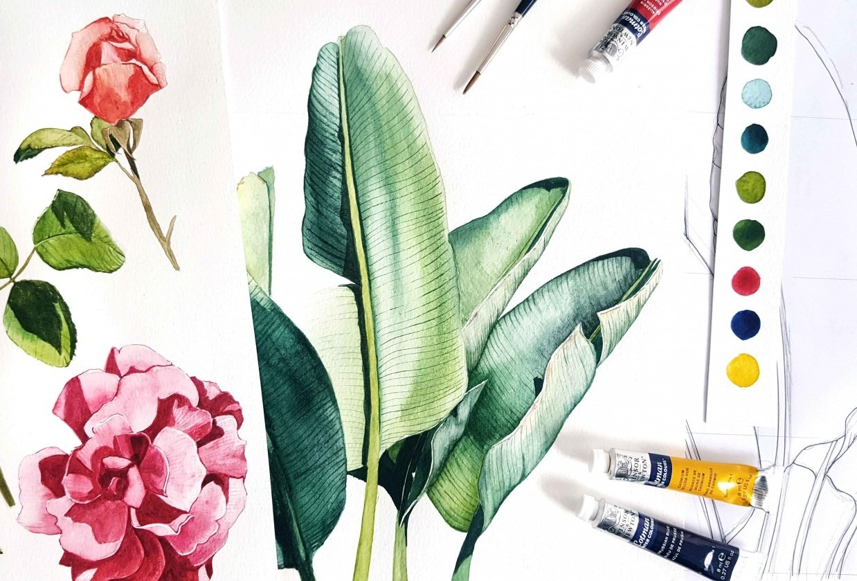 Sunny Day Botanicals in Watercolors - student project