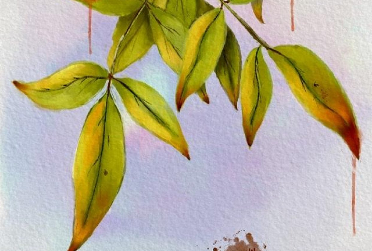 Leaves Watercolor - student project