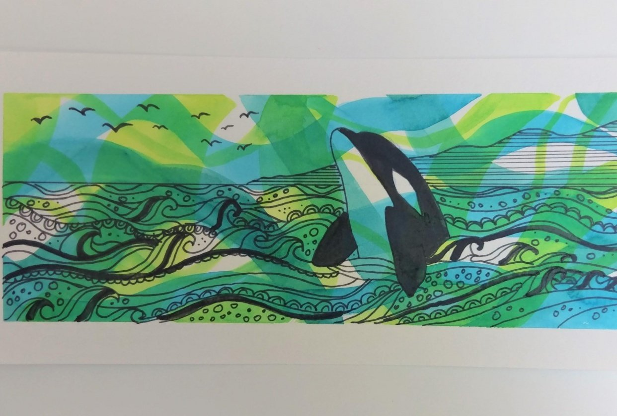 Seal in a Kelp Forest & Orca - student project