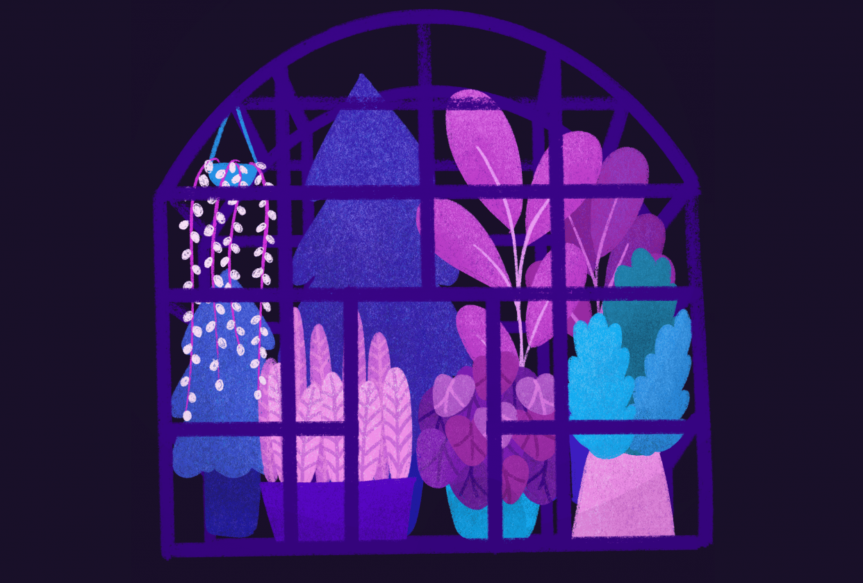 Playing with textures: greenhouse at night - student project