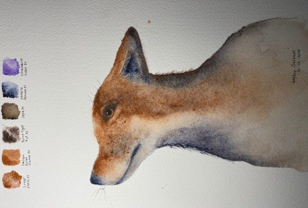 Mr Fox - student project