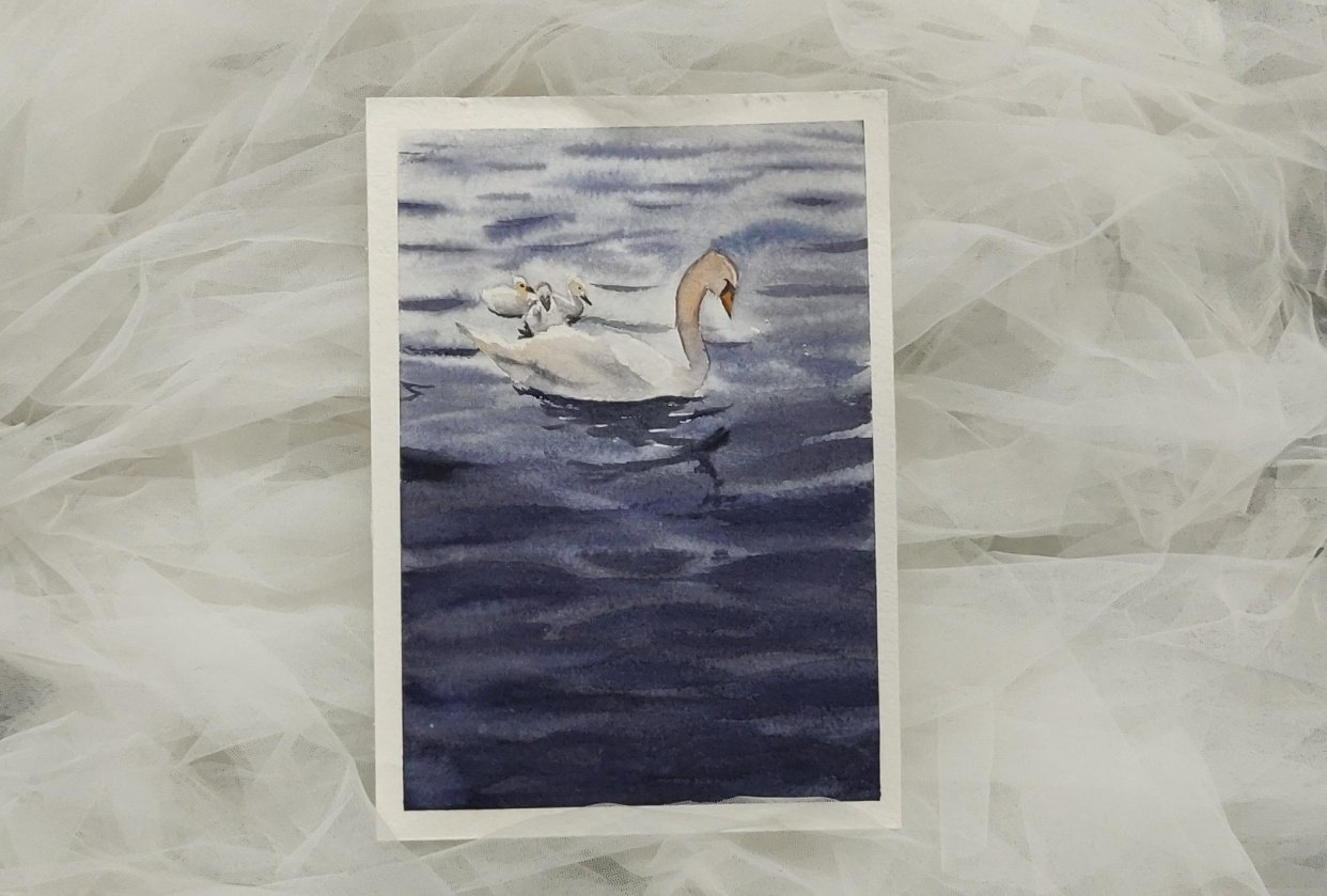 Swan Lake - student project