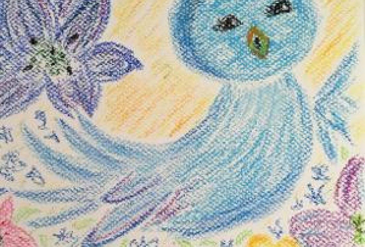 pastel bird - student project