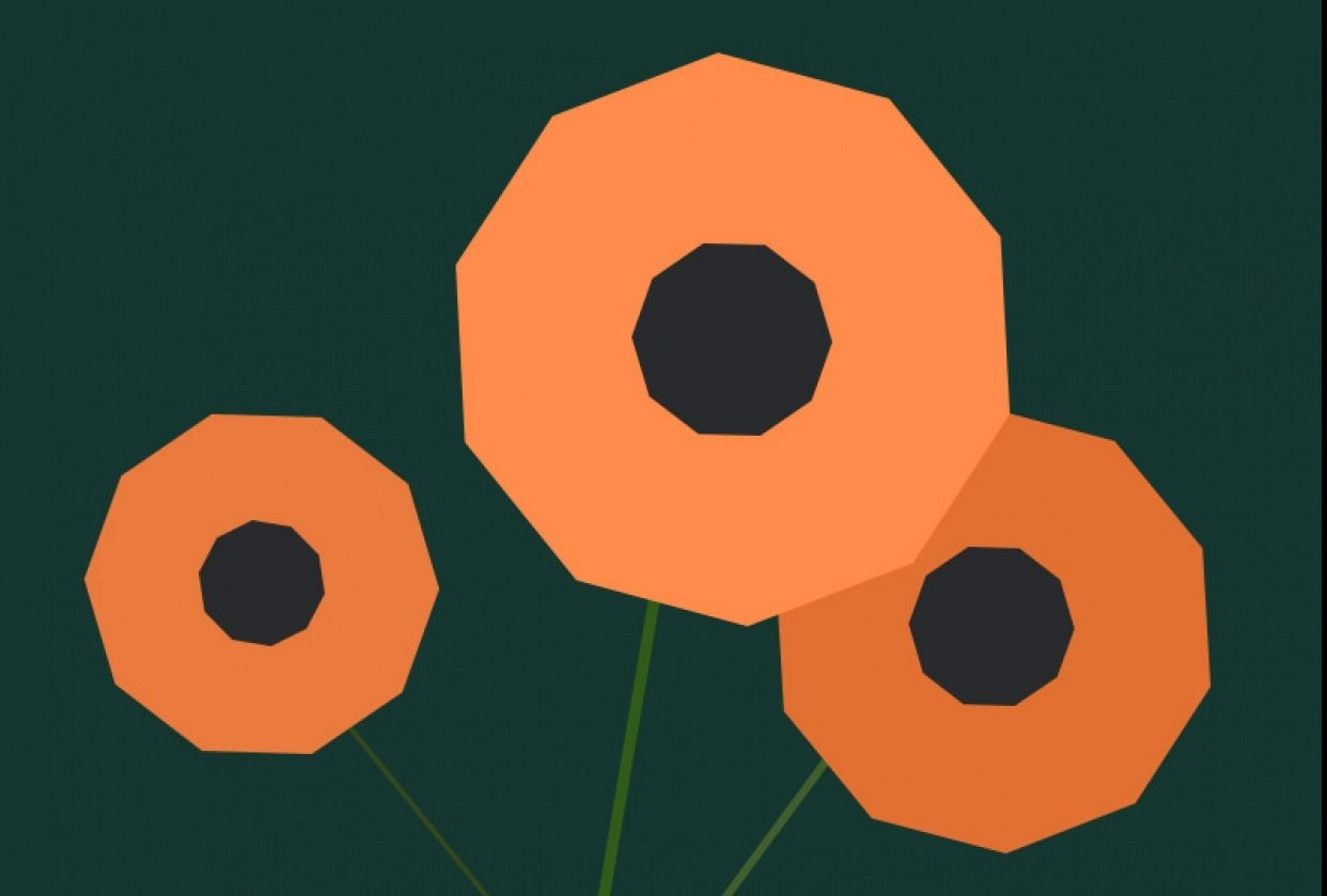 Poppy Flowers - student project