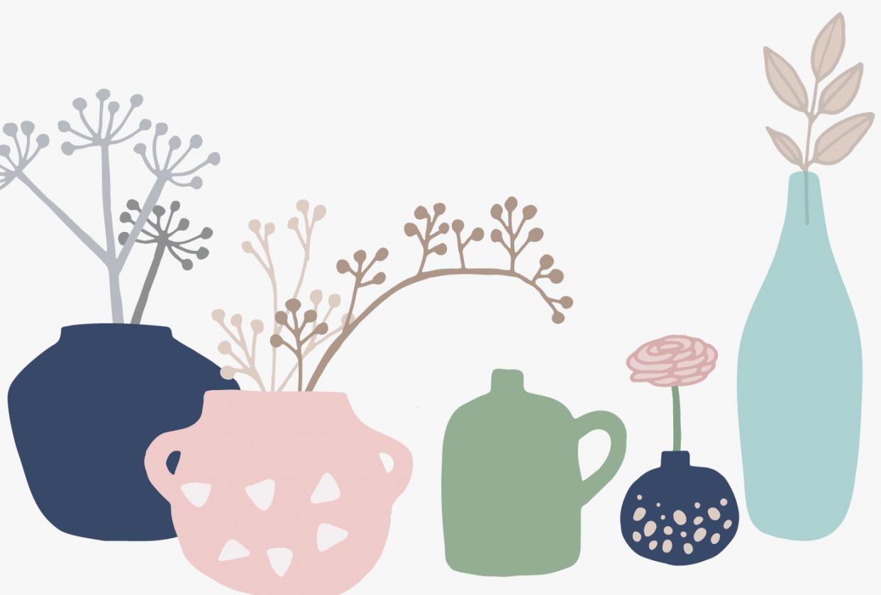 Plants indoor - student project