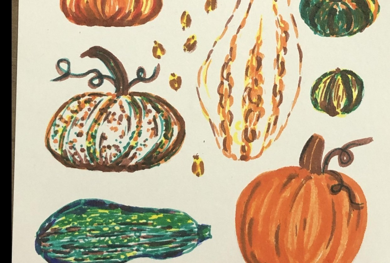 Pumpkins and gourds with markers - student project