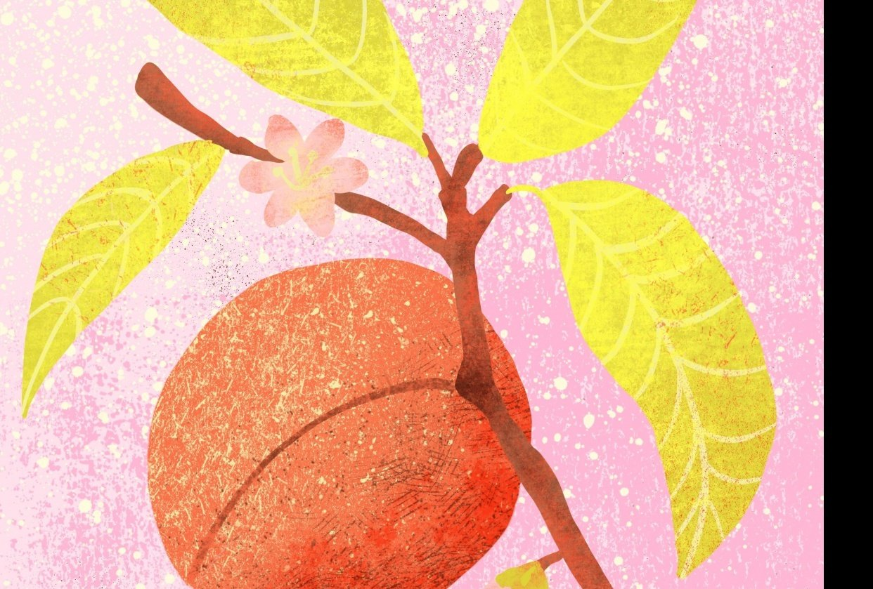 Illustrating with Layered Texture and Color in Procreate - student project