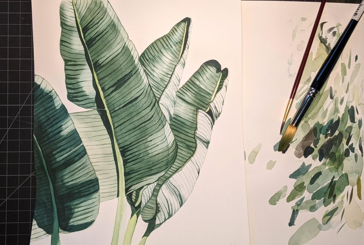 Botanical Watercolor Study - student project