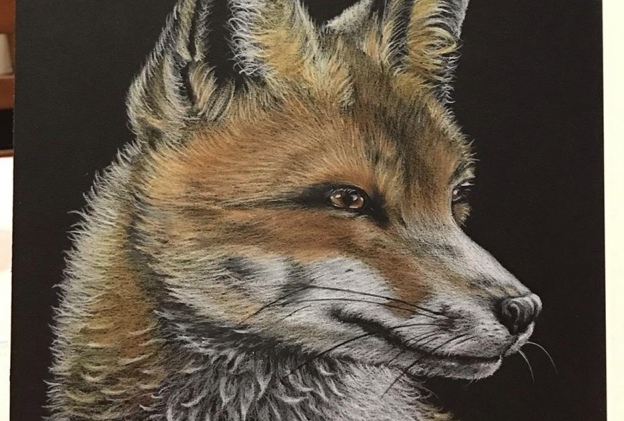 Foxy Loxy - student project