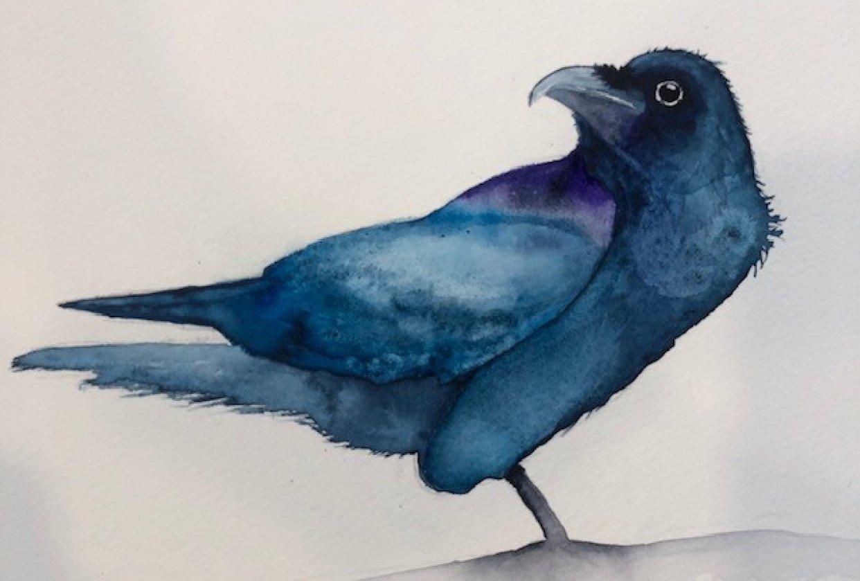Raven LB - student project