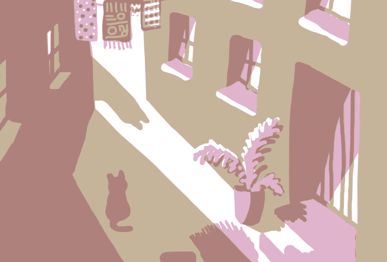 Cats on the street - student project