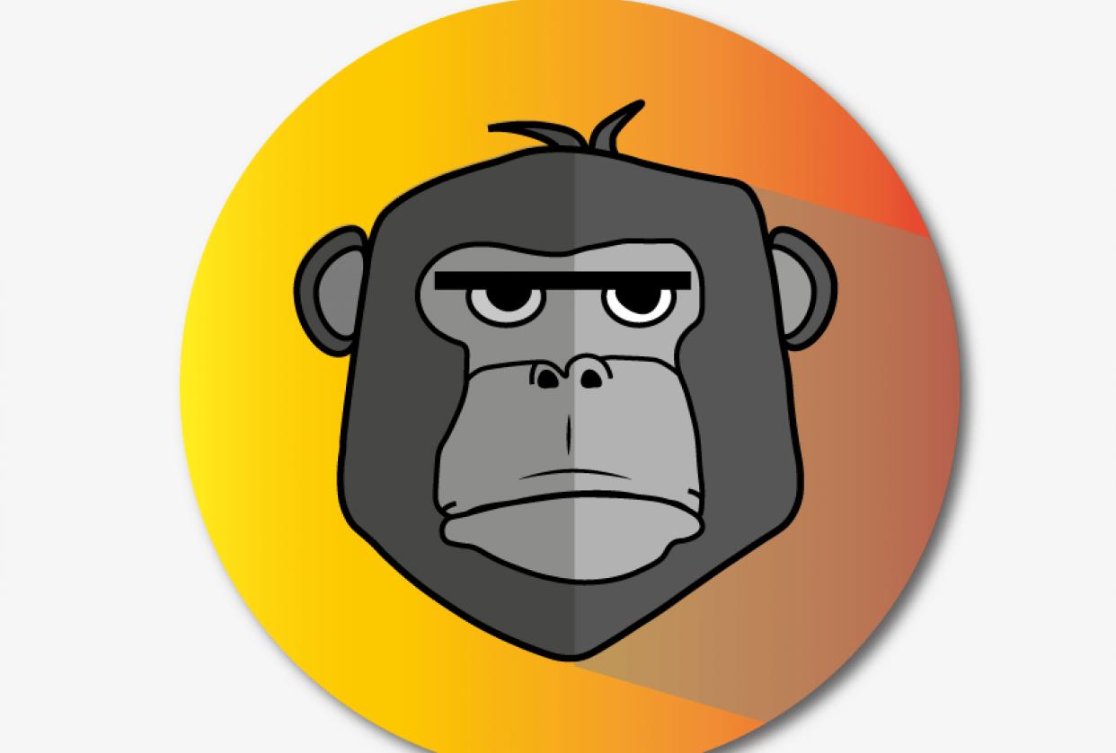 gorilla - student project
