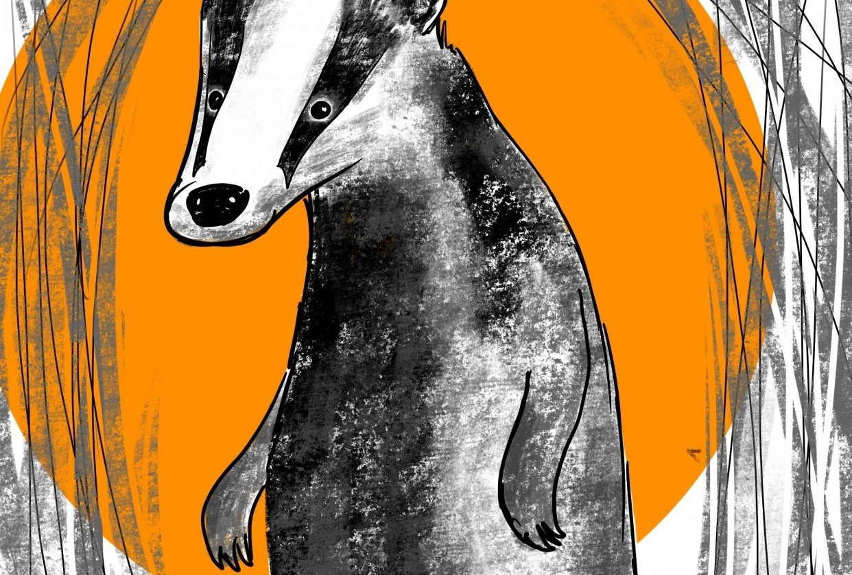 Badger Illustration for Procreate tips class - student project
