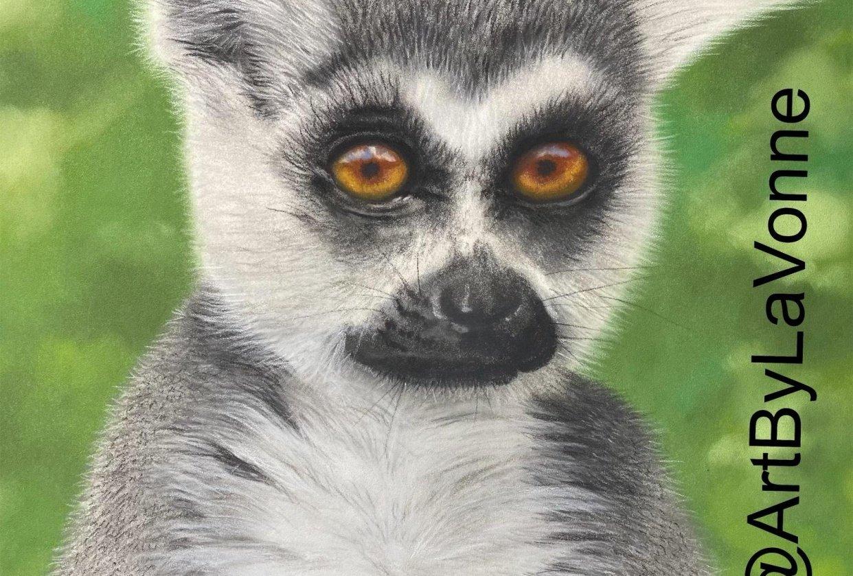 Cute Little Lemur - student project